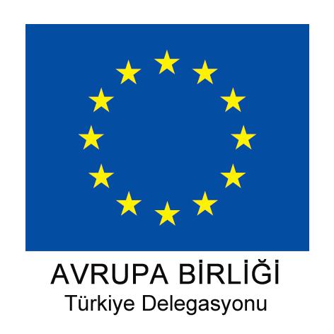 ab turkiye delegasyonu